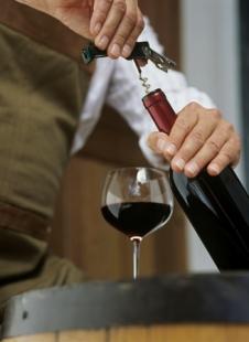 Vinařský kurz začátečník s Degustací tuzemských vín